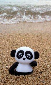 Panda_plage-179x300 dans Musique