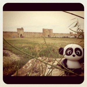 Panda Tour 2011 : Aigues-Mortes dans extras ordinaires aigues01-300x300